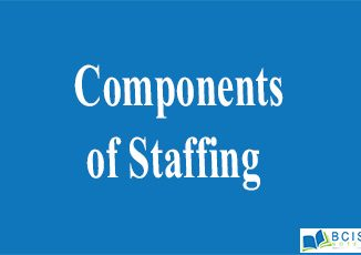 Components of Staffing || Organizational Structure and Staffing || Bcis notes