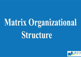 Matrix Organizational Structure || Organizational Structure And Design || Bcis Notes