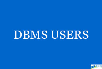 DBMS Users