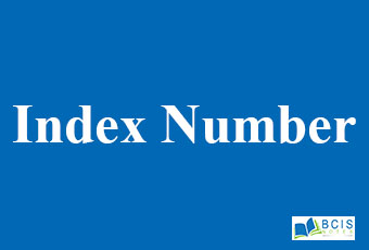 Index Number || Data Analysis and Modeling || Bcis Notes