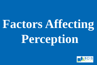 Factors affecting perception
